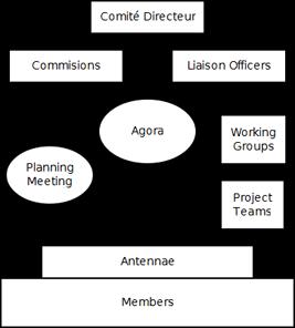Organigramma AEGEE